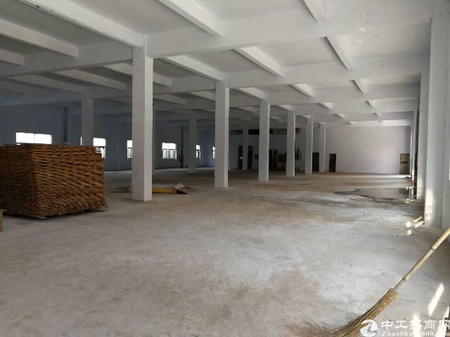 公明南光高速口新出花园式独院厂房30000平米可分租