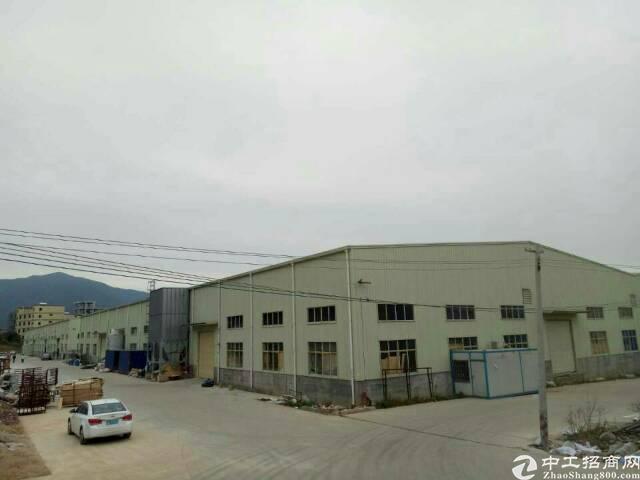 新圩8000平全新独院钢构厂房高10米空地超大可分租