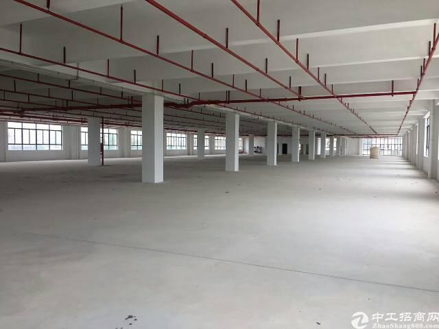 惠州仲恺高新区新出独院厂房16000平方米带装修有红本原房东