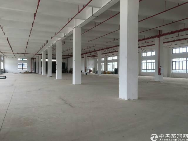 惠州仲恺高新区新出独院厂房16000平方米带装修有红本原房东-图4