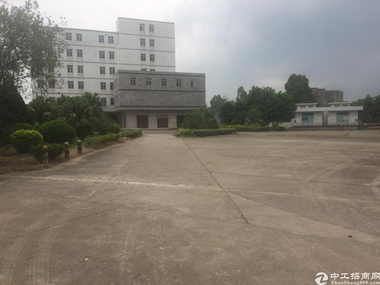 广州新塘原房东独院厂房100000万平米