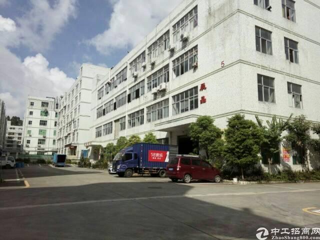 石岩水田一楼1080平高六米厂房招租