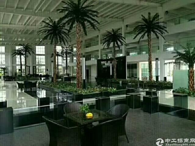 60000平方花园式标准厂房低价出租