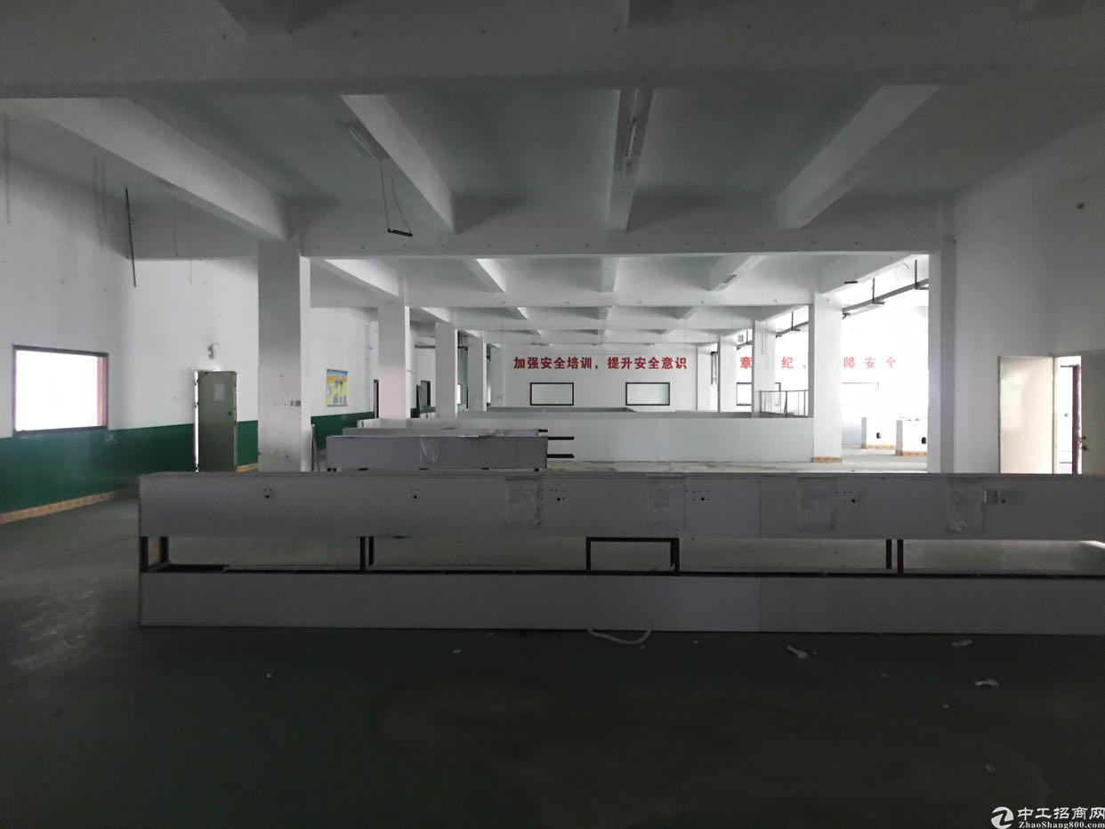大康社区新出四楼一整层2200,带地坪漆,办公室装修出租
