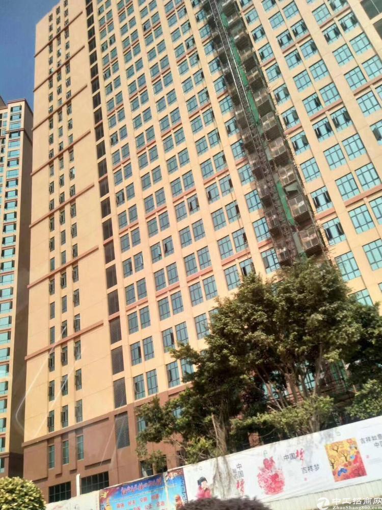 松山湖红本厂房整层分割500平米起独立50年产权带租约