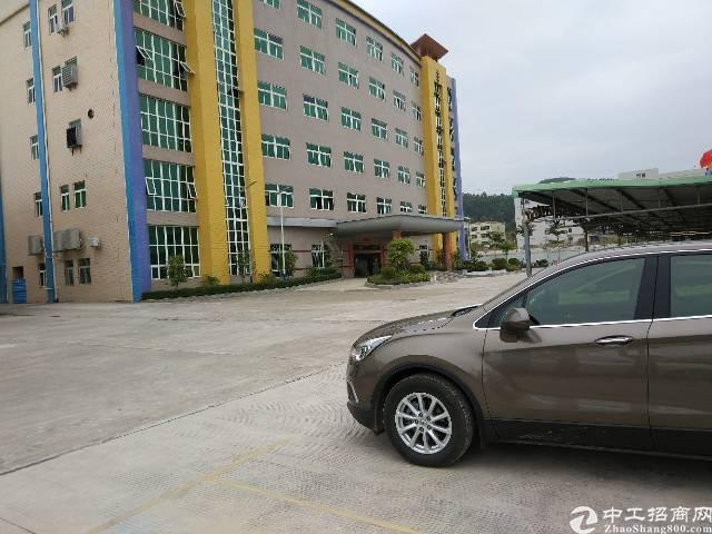 惠环原房东整栋一楼8米高钢构厂房1100平方