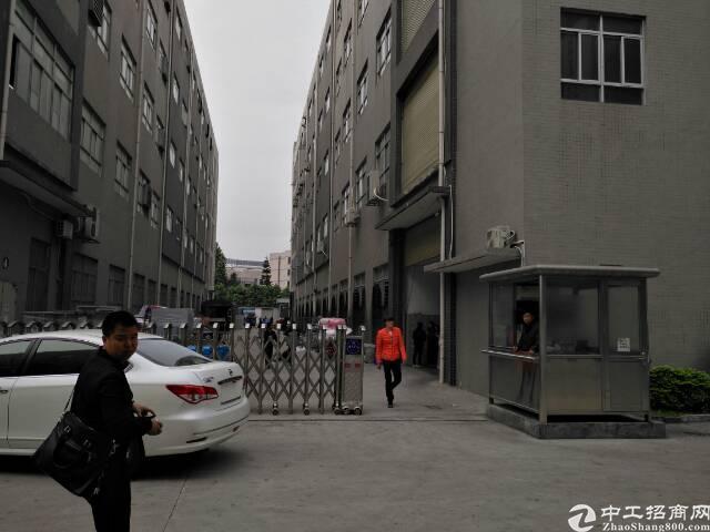 大岭山连平房东低价分租标准一楼厂房3000平方-图3