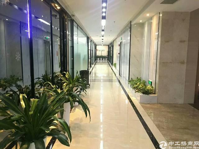 惠州仲恺高新区新出独院厂房16000平方米带装修有红本原房东-图5