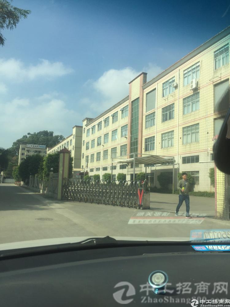 横沥镇新出原房东独门独院10000平方厂房现成装修