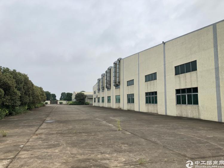 清溪近塘厦单一层独院厂房6500平方低价急租-图2