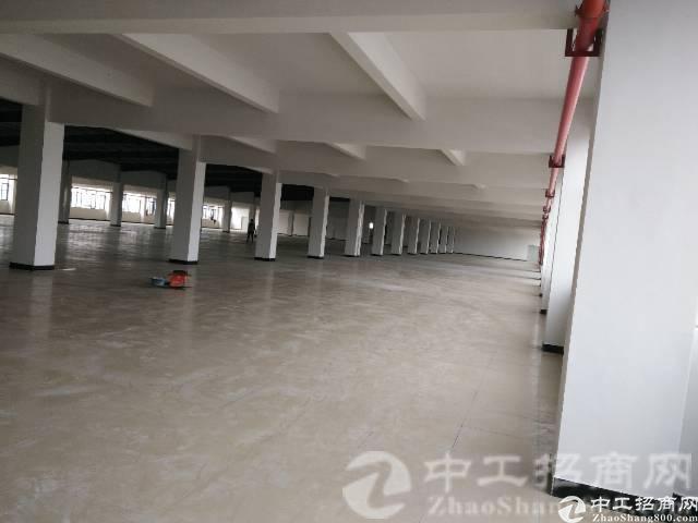 横沥镇新出原房东独门独院10000平方厂房现成装修-图2