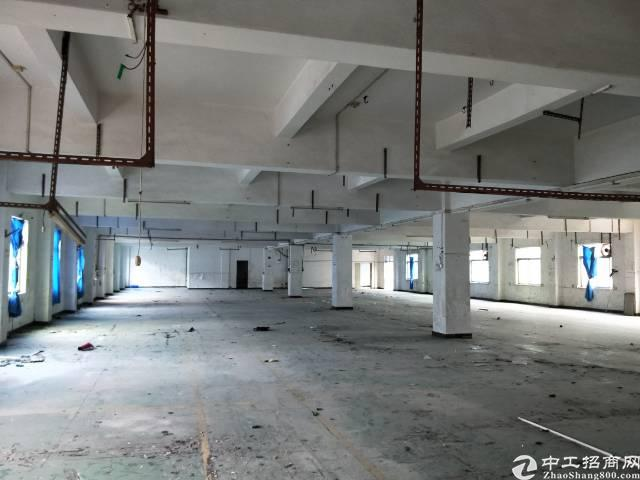 成熟工业区独院厂房带宿舍分租