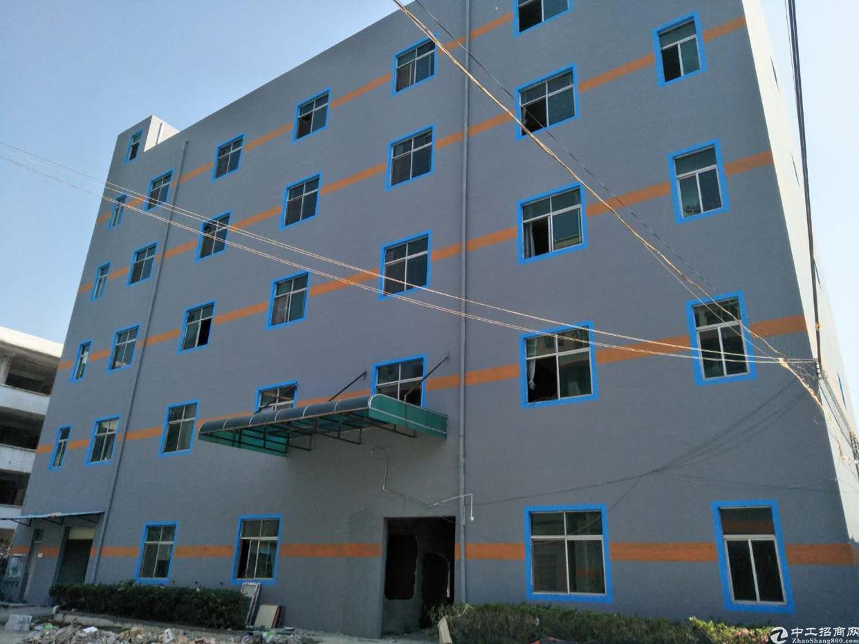 横岗六约社区全新翻新1200平方共二层单层600平方大小可分-图3