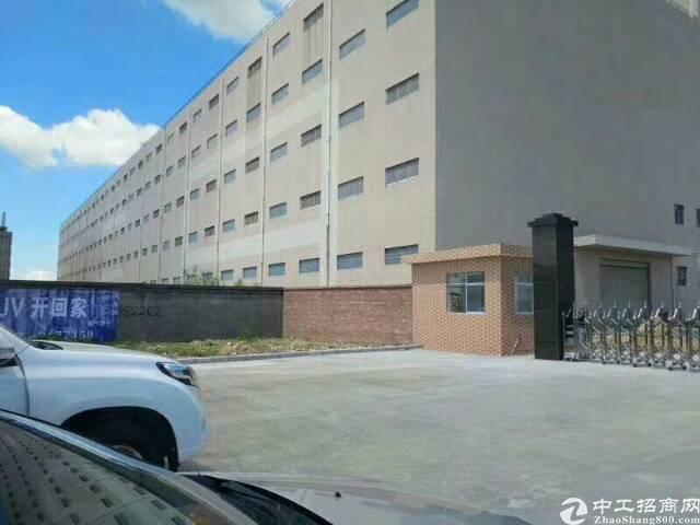 广州增城新塘高端大气电商产业园厂房30000平方招租可分租