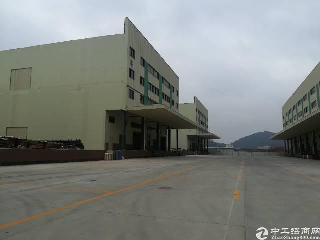 全新黄埔钢结构高台仓库出租,消防喷淋,5吨电梯
