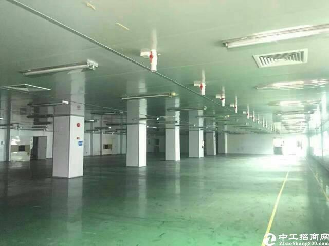 大朗新出原房东独院厂房1-3层8400平方