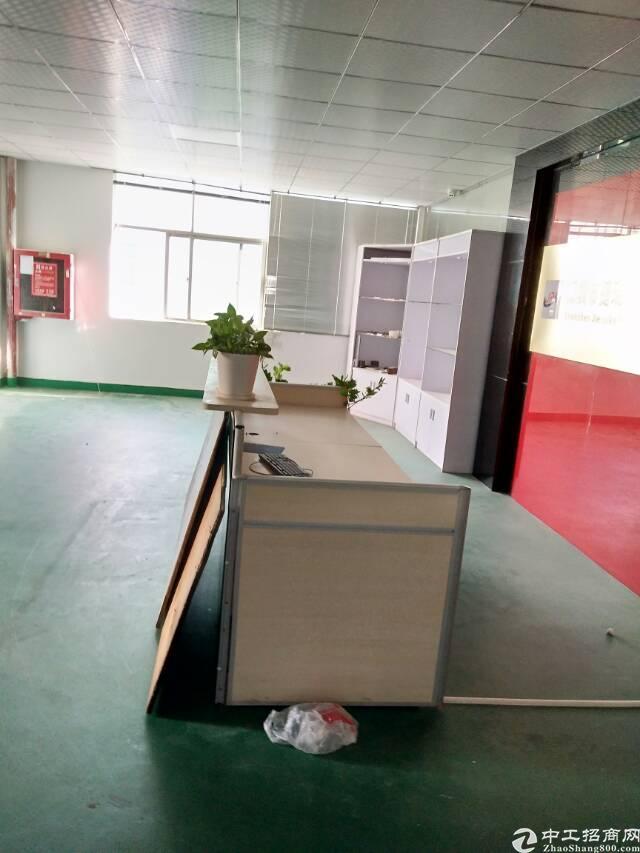 坑梓金沙二楼单层1800平全新办公室装修无转让费