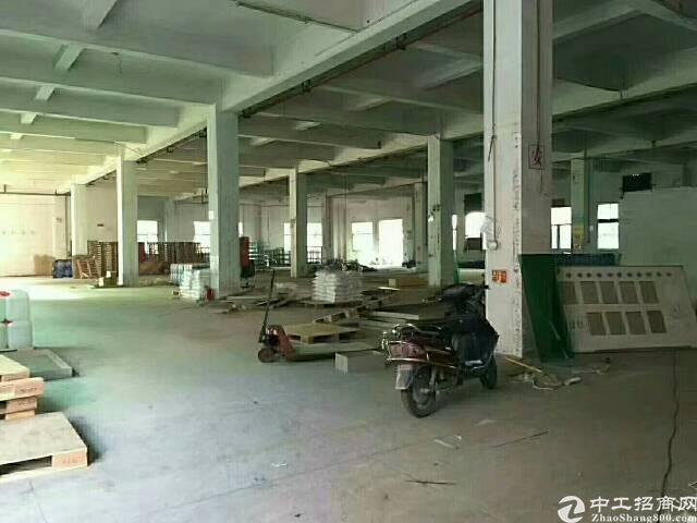 福永独院8000平出租可分租-图5
