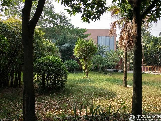 长安镇沙头村沙头南区附近11米高独栋钢构2400平米招租-图3