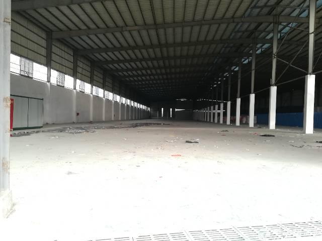 单一层钢结构厂房出租分租-图3