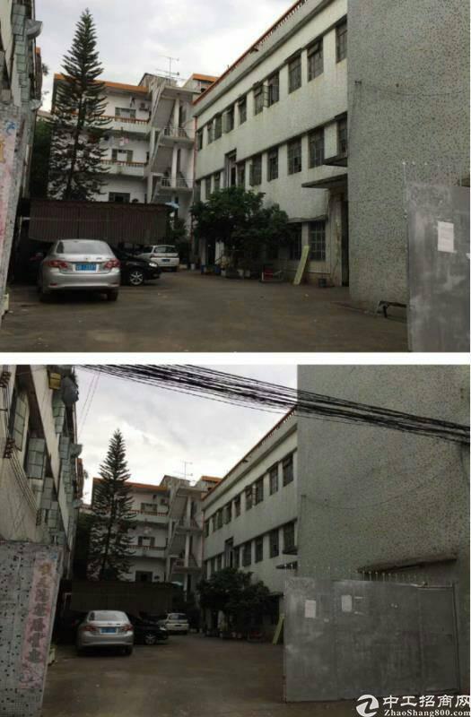 凤岗镇建筑 2400 ㎡村委合同厂房出售