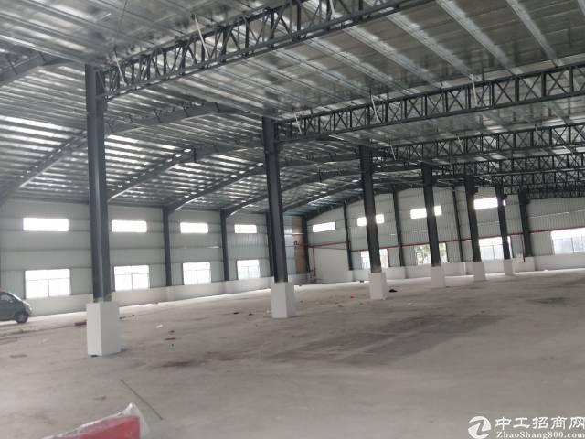 企石镇独门独院单一层滴水8米钢构厂房出租-图4