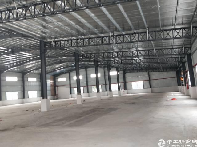 企石镇独门独院单一层滴水8米钢构厂房出租-图3