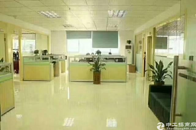 松岗中心新出高档精装修写字楼,面积2000,出租