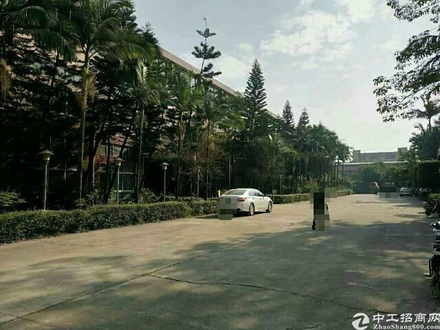 东莞清溪原房东高端大气独院厂房70000平方招租-图5