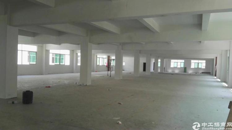 布吉吉夏早和坑工业区新出一层厂房