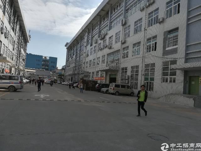 公明龙大高速楼村出口新出一楼2400平可分租