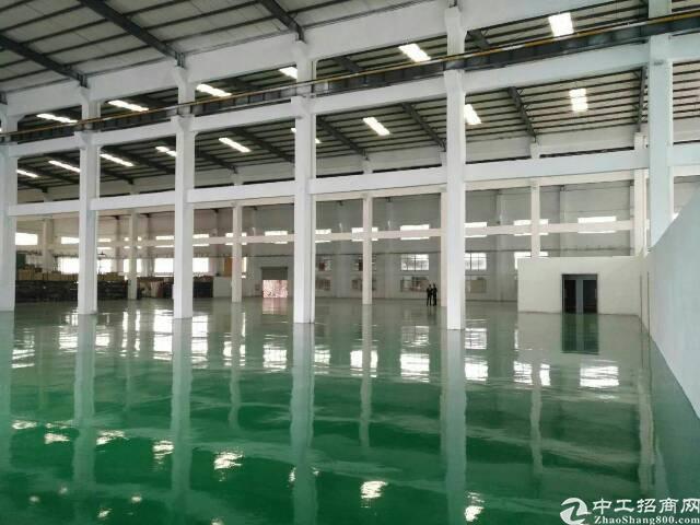 塘厦镇新出钢构滴水12米高厂房5500平方米出租