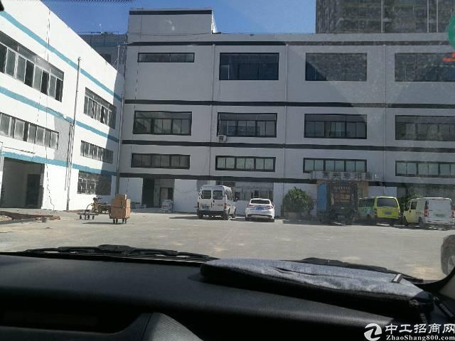 龙华油松办公厂房出租200平起大小分租