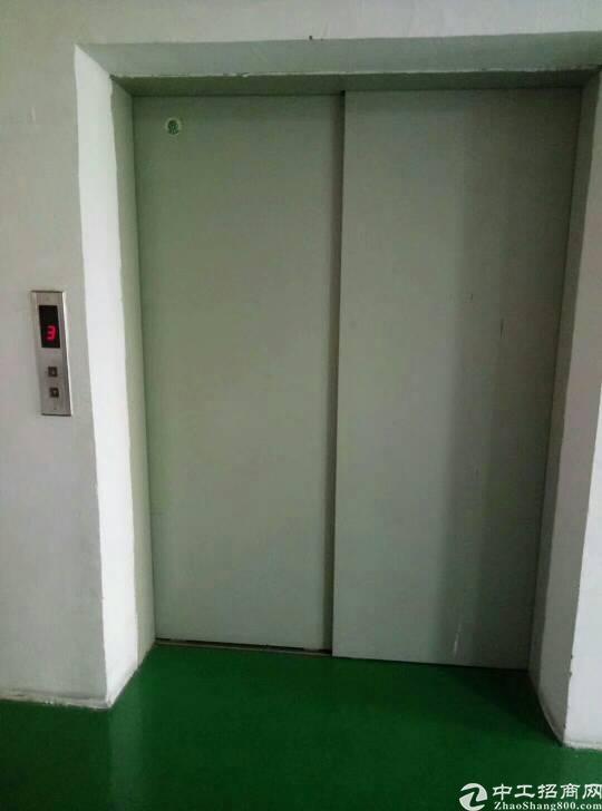独栋四层1400平方,每层350平,带精装修,电梯2吨!