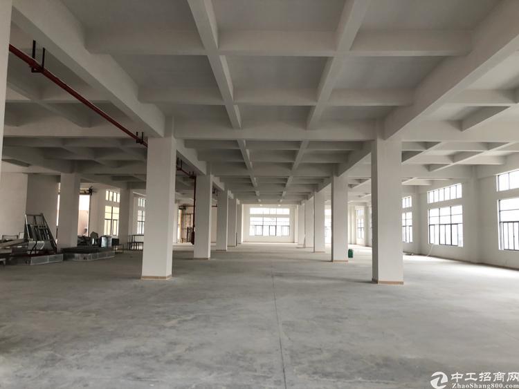 清溪近凤岗全新标准厂房一楼2000平方急租