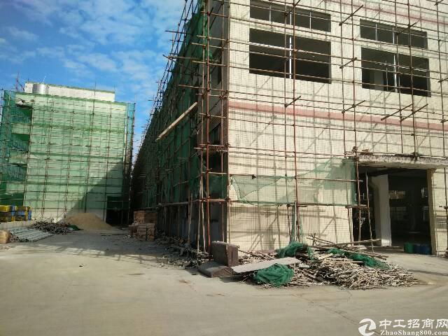 清溪镇新出独门独院厂房6400平方招租