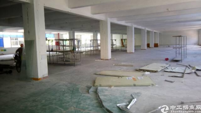 福永新和2500平米厂房招租
