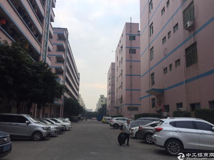 福永新和新出楼上750平方带精装修厂房招租