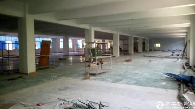 福永新和2500平米厂房招租-图3