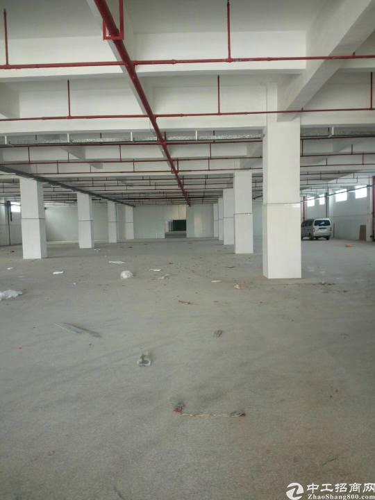 惠州市园洲镇独院厂房50000平方出租-图3