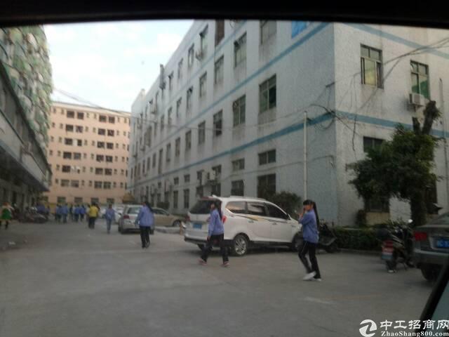 福永和平新出2楼1400平方带装修厂房不用转让费出租