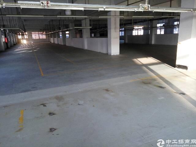 平湖辅城坳高速出口新出独门独院厂房9000平方-图5