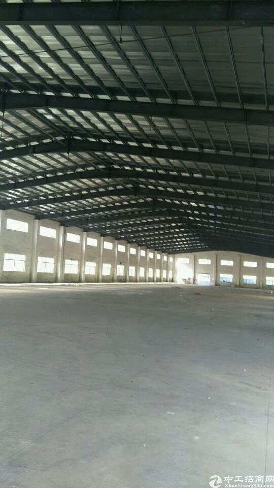 广州增城新塘独院单一层厂房8600平方招租可分租-图4