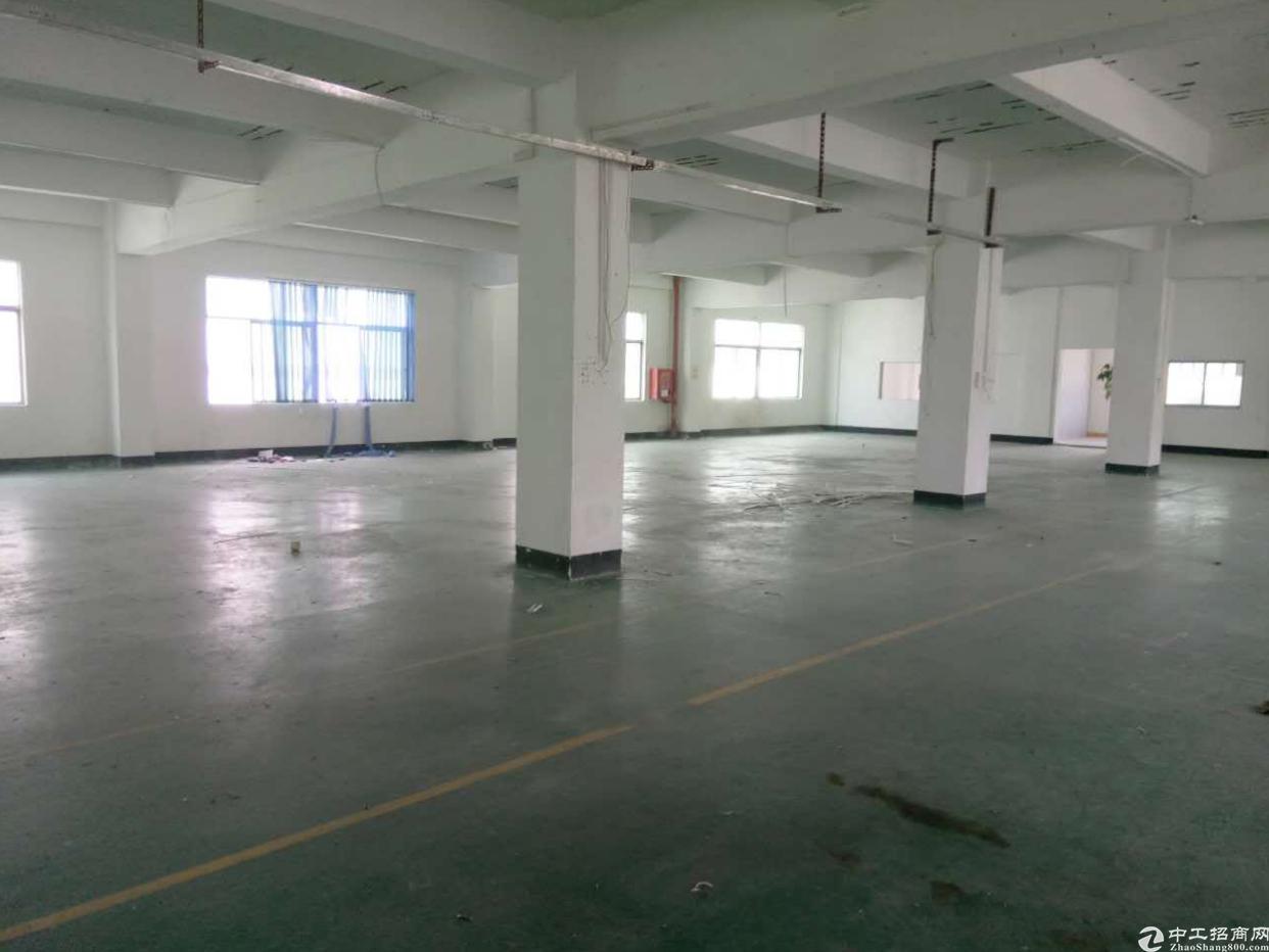 坪山新区坑梓独院厂房分租楼上1500平方