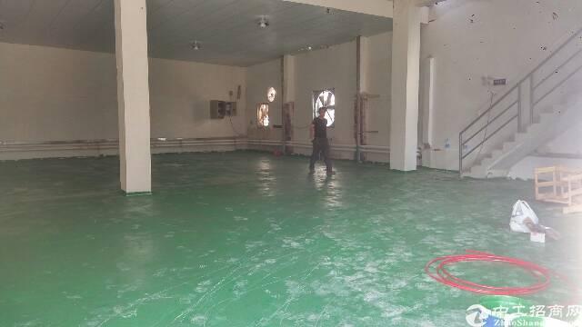 横沥镇新出分租一楼600平方-图2