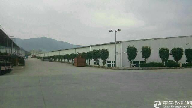 广州增城新塘独院单一层厂房8600平方招租可分租-图3