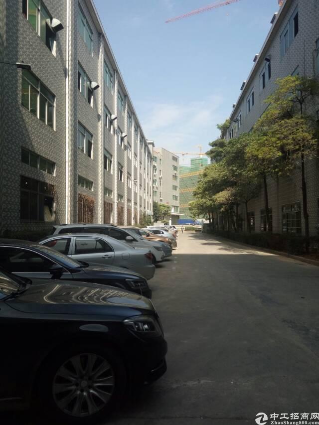 """观澜""""原房东""""标准厂房2200平,带办公室装修,两部货梯。"""