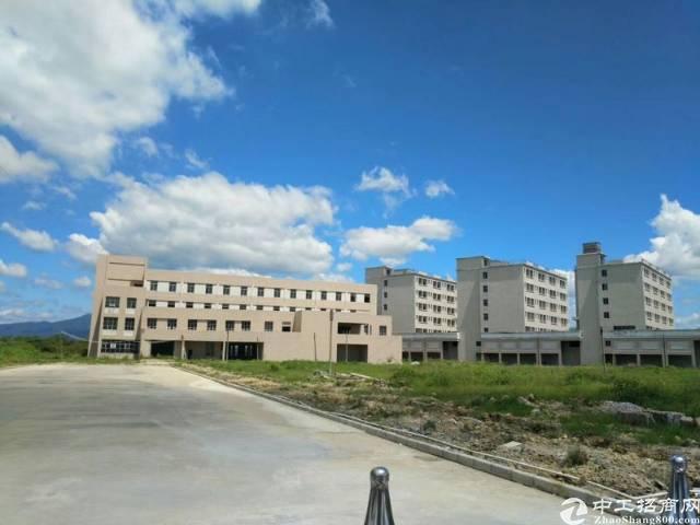 惠州市园洲镇独院厂房50000平方出租-图2