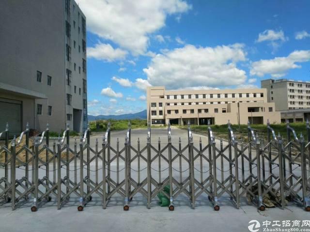 惠州市园洲镇独院厂房50000平方出租