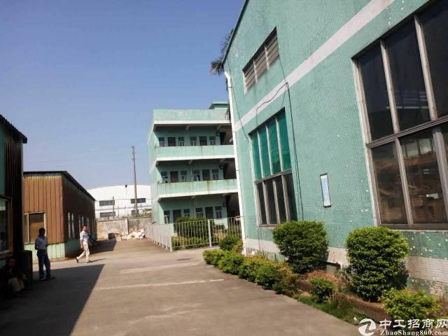 惠州市园洲镇独院单一层厂房20000平方低价出租